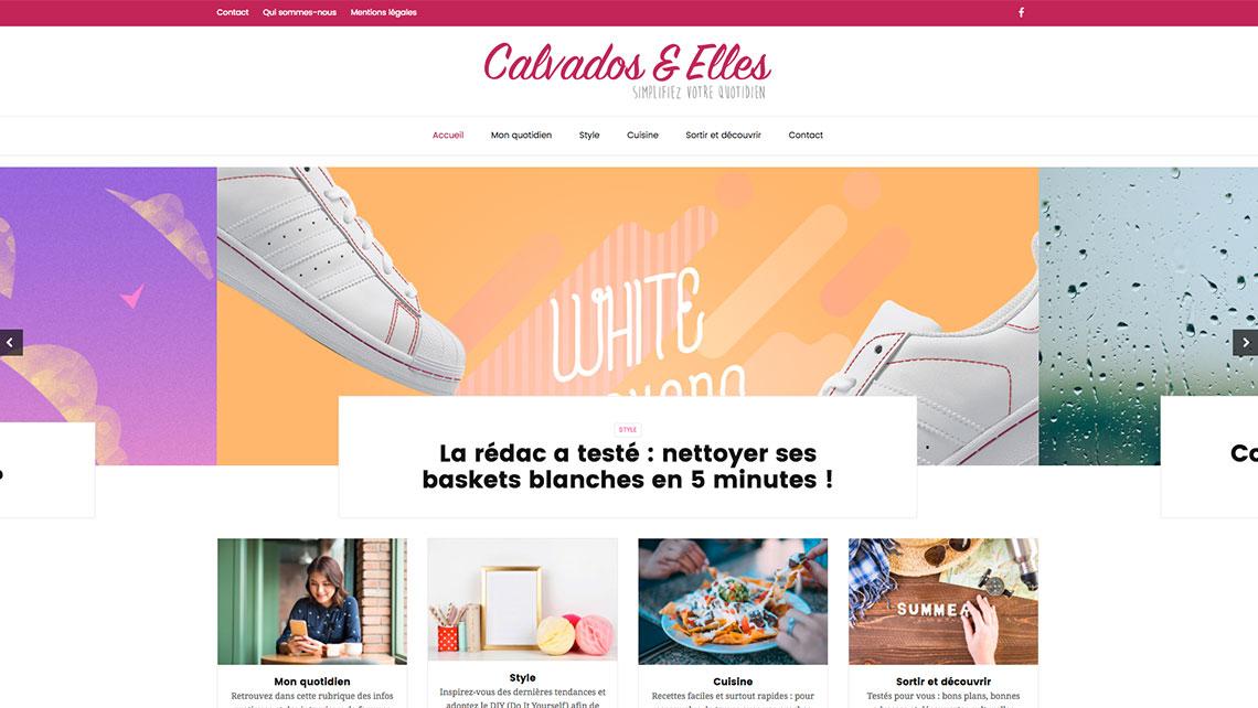 TONY-OHEIX-Webmaster-Webdesigner-Caen-Dernier-projet-31