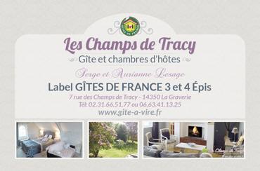 TONY-OHEIX-Webmaster-Webdesigner-Caen-Actu-03