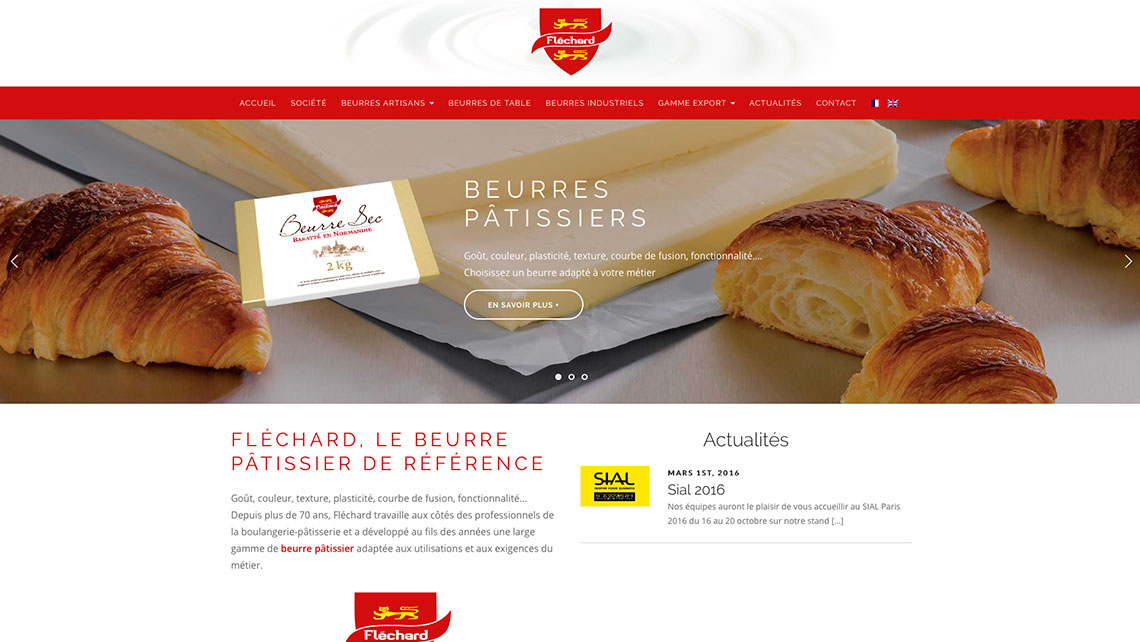 TONY-OHEIX-Webmaster-Webdesigner-Caen-Dernier-projet-14
